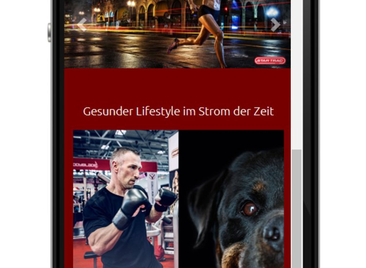 Ems-Fitness Webseite